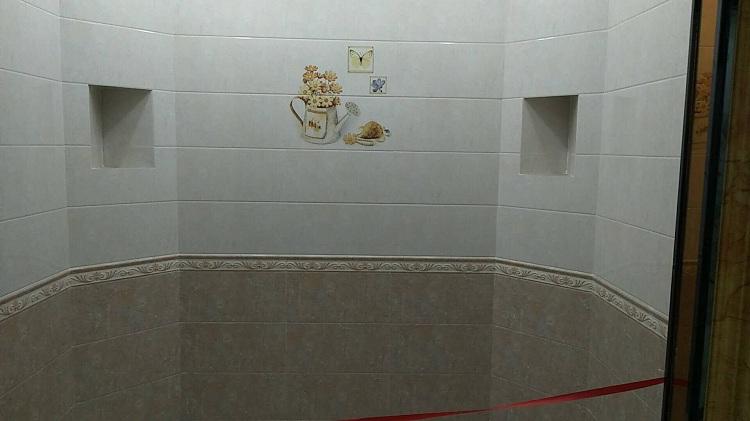 河北内墙砖 瓷片 (10).jpg