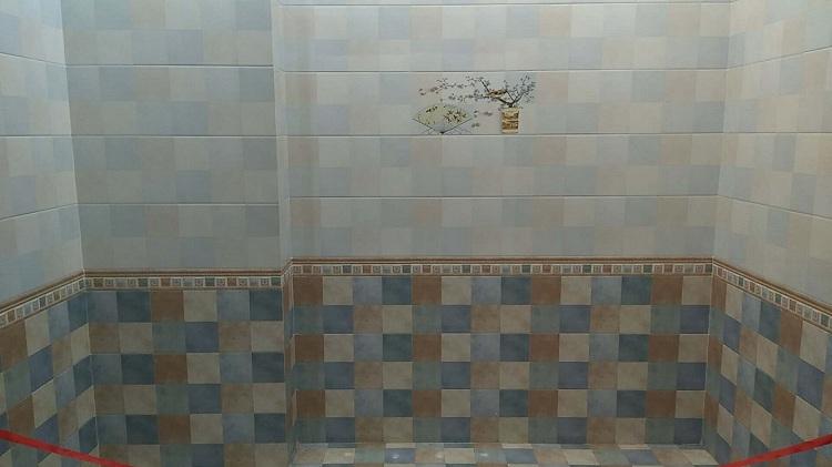 河北内墙砖 瓷片 (17).jpg